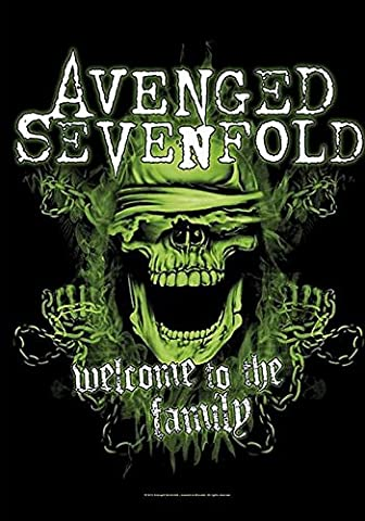 Avenged Sevenfold Welcome To The Family Flag standard