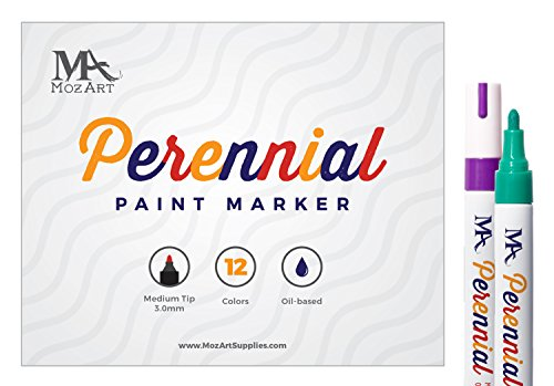 permanent-paint-marker-set-12-colours-oil-based-paint-markers-high-permanence-for-glass-metal-wood-p