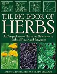 The Big Book of Herbs: A Comprehensive Illustrated Reference to Herbs of Flavor and Fragrance