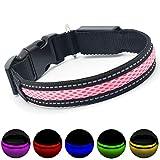 MASBRILL Leuchthalsband für Hunde aufladbar LED hundehalsband Blinkende Lichter mit USB verstellbar 3 Modells (M, Pink)