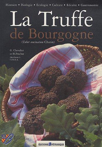 La Truffe de Bourgogne : (Tuber uncinatum Chatin)