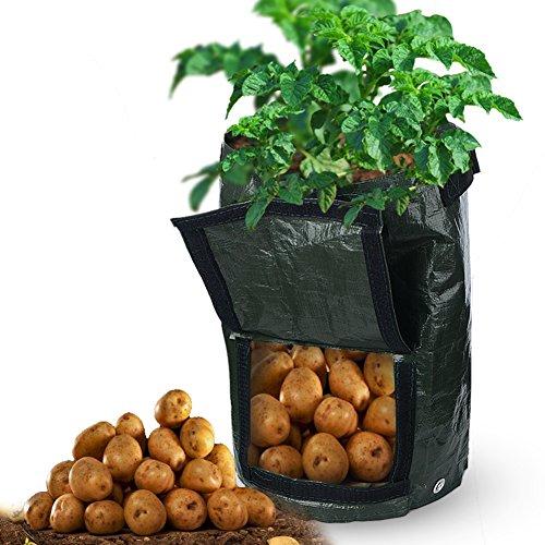 Lot de 2 10 Gallon Jardin de pomme de terre de croissance Sacs avec poignées à rabat et aération Tissu Pots Heavy Duty