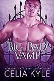 Big Bad Vamp (BBW Paranormal Vampire Romance) (Knight Protectors Book 2)