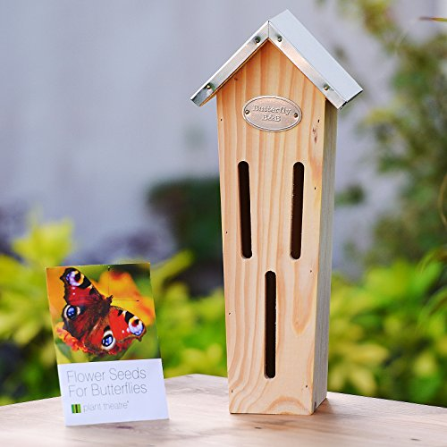 Plant Theatre Butterfly B&B and Flower Seeds for Butterflies - Excellent Gift Test