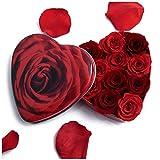 Rosenherz ewige Rosen lang haltbar 3 Jahre Blumen-Geschenk für Damen/Blumengesteck / Rosenbox ROSEMARIE SCHULZ (Klein, Rot-Variation)
