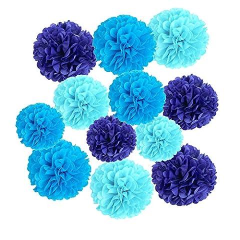 Wartoon Seidenpapier Pompons Blumen Ball Dekorpapier Kit für Geburtstag, Hochzeit, Baby Dusche, Parteien, Hauptdekorationen, Partei Dekoration - 12 Stück ( Hellblau, Blau und Royalblau (Blumen Pappteller)