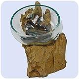 Wurzelholz Glas-Vase Wurzel-Vase Deko-Glas Geschenk Unikat Objekt Design Blumenvase Schale