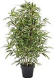 Bamboo Bambu - Albero Artificiale Da Arredo Esterno Con Tronchi Veri - Resistente Ai Raggi U.V. Certificato TUV - Alto 100 cm