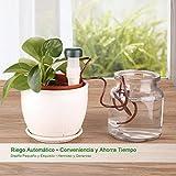 YISSVIC 8Pcs Sistema de Riego Automático Micro System de Goteo de Riego para Flor y Planta de Interior