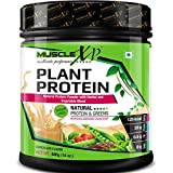 MuscleXP Plant Protein - Natural Protein Powder With Herbal And Vegetable Blend, 400g