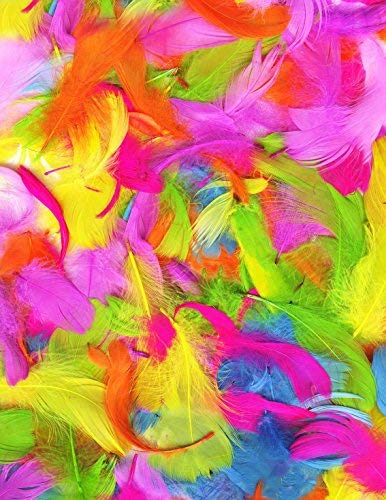 Plumas (Pack de Colores Vivos)