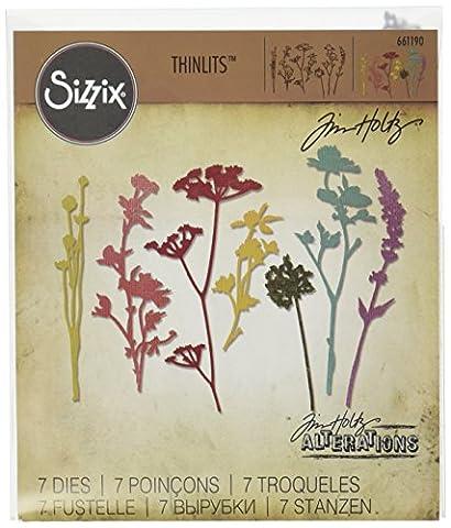 Sizzix 661190 Thinlits Die Set Matrice Fleur Sauvage par Tim Holtz Acier Carbone Multicolore 19 x 14,5 x 0,5 cm 7 Pièces