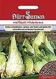 Spitzkohl Filderkraut Weißkohl ca. 200 Samen
