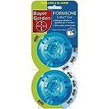 Bayer 1151619 Solfac Gel Box Formiche, 2 x 2 gr
