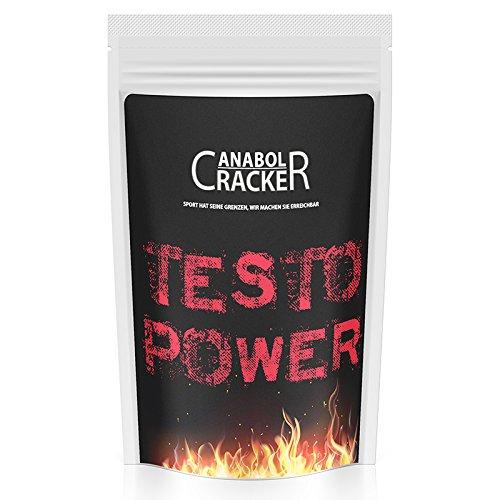 Beste Muskelaufbau-stack (Testo Power, Whey Protein Creatin Shake, 500g Beutel, Frucht oder Cappucciono Geschmack, Eiweißpulver Muskelaufbau (Frucht))