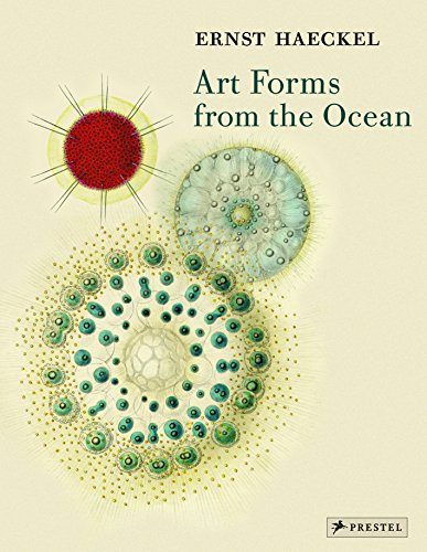 Art Forms from the Ocean: The Radiolarian Prints of Ernst Haeckel por Olaf Breidbach