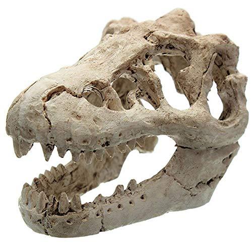 Alwayswe Künstliche Dinosaurier Skelett Totenkopf Aquarium Fisch Tank -