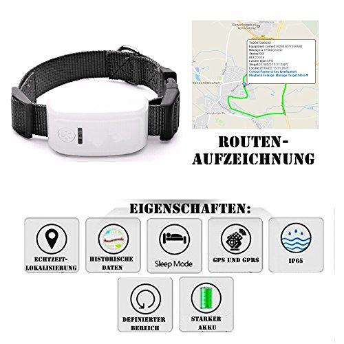GPS-Tracker Peilsender für Personen Tiere und Gegenstände GPS-Sender Echtzeitlokalisierung via APP oder Web GPS Tracker für Tiere Kinder Senioren Funktion KFZ SMS GPRS mit Onlinetracking EC53