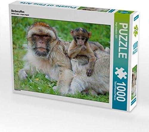 CALVENDO Puzzle Berberaffen 1000 Teile Lege-Grösse 64 x 48 cm Foto-Puzzle Bild Von Gerlach GDT Ingo | Excellent (dans) La Qualité