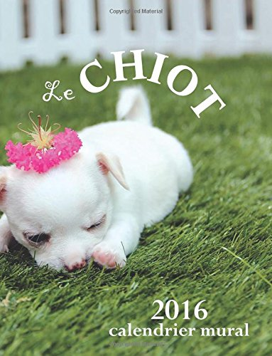 Le Chiot 2016 Calendrier Mural (Edition France) par Aberdeen Stationers