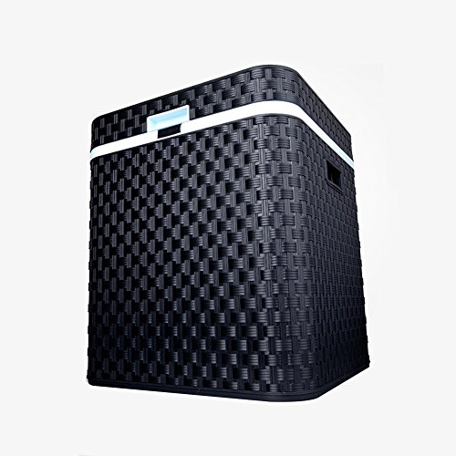 Liqicai 44l portatile frigo portatile per auto riscaldamento raffreddamento doppio uso 12v dc (auto)/24 v cc (camion)/230 v ac (casa) (colore : nero)