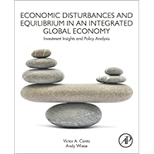 Economic Disturbances and Equilibrium in an Integrated Global Economy: Investment Insights and Policy Analysis