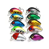 Wildlead 10 Pcs/Set Crankbait 3CM 1.5G Artificial 3D Eyes Fishing Lures Hard Bait Fish Wobblers 10# Hooks