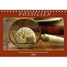 Suchergebnis auf Amazon.de für: Erdzeitalter: Bücher