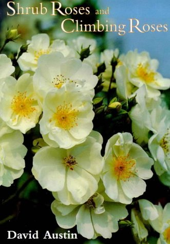 Shrub Roses & Climbing Roses: With Hybrid Tea and Floribunda Roses