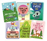 SYGA Set of 27 Multicolor Baby Milestone Cards