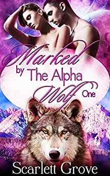 Marked By The Alpha Wolf: Book One (Braving Darkness 1) (English Edition)