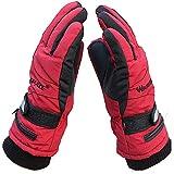 TSSM Elektrisch beheizte Handschuhe, Motorrad beheizte Handschuhe für Männer und Frauen 3.7V 2000MAH Batteriebetriebene elektrisch beheizte Funktioniert bis zu 4 Stunden Ski Bike,Rot -