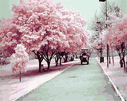 CaptainCrafts New Malen nach Zahlen 16x20 für Erwachsene, K0inder Leinwand - Kyoto Sakura Frühling, Romantische Straße (Mit Rahmen)
