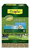 Flower 10786 10786-Semilla césped litoral grama Fina, 1 kg, No No aplica 20.4x7.5x31 cm
