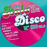 "ZYX Italo Disco 12"""" Hits Vol. 3"