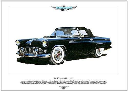 FORD THUNDERBIRD (1955) classic car print - A3 size by golden era