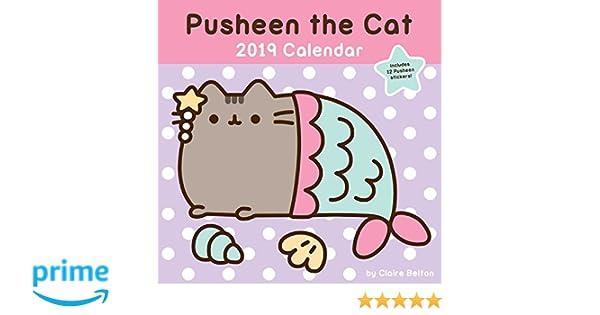 pusheen the cat 2019 wall calendar calendar wall calendar july 24 2018 claire belton andrews mcmeel publishing 144949191x calendars
