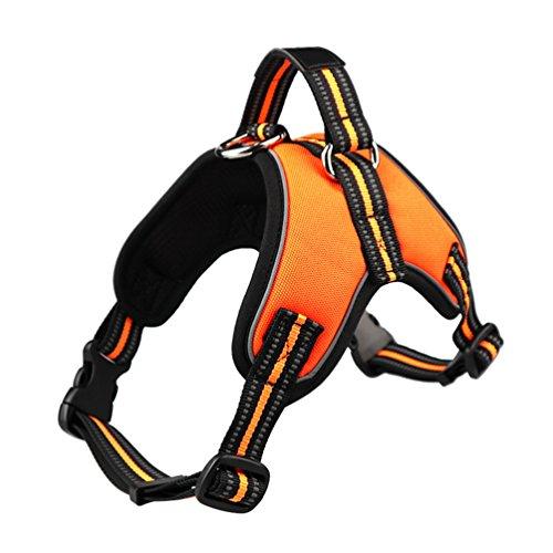 Yiiquanan Hochwertige Reflektierend Hundegeschirr Harness Weste für Mittlere/Große Hunde - Geschirr Verstellbar (Orange, Asia S)
