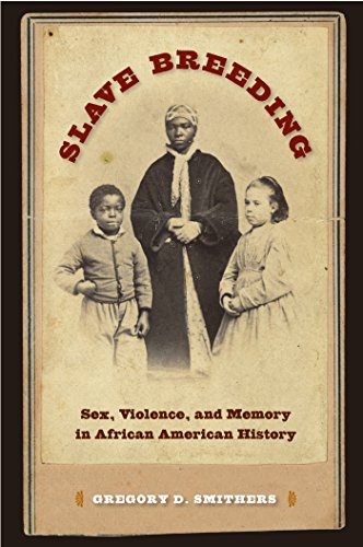 Slave Breeding: Sex, Violence, and Memory in African American History - Asian Sex Slave