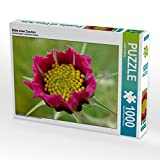 Blüte Einer Cosmea 1000 Teile Puzzle Quer