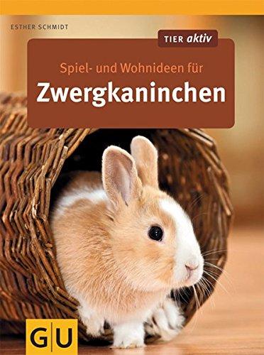 spiel-und-wohnideen-fr-zwergkaninchen-gu-tier-aktiv
