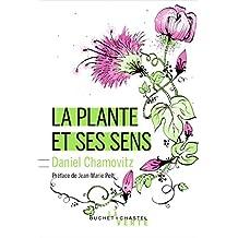 La Plante et ses sens - nouvelle édition (Écologie)