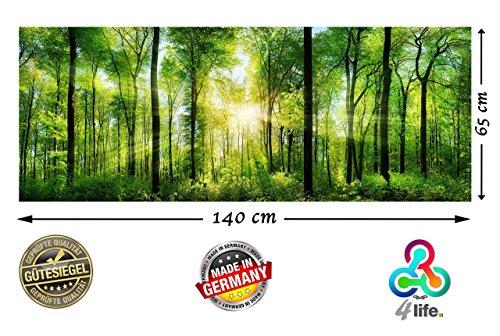 Für Küche Großes Bild (PMP-4life Wand-Bild Wald, hochauflösendes Wald-Poster XXL, Natur Poster XXL großes Fotoposter Bild | Landschaft Bäume Blumen Wald | 140 cm x 65 cm |)