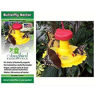 2PK Butterfly Feeder / Nectar Combo 2PK Butterfly Feeder / Nectar Combo 51QPKHPGetL