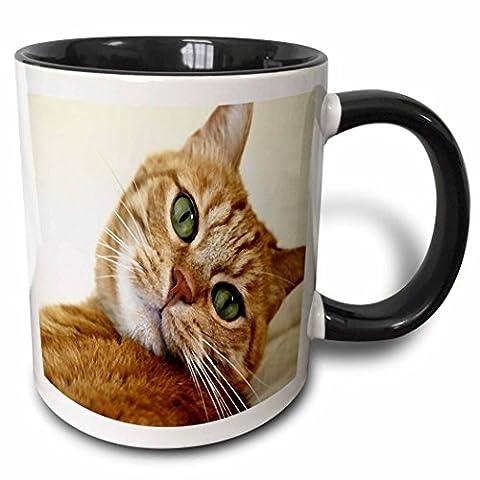 Mensuk Print of Orange Tabby Cat Painting Two Tone Black Mug, 11 oz, Black/White
