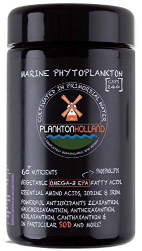 Marines Phytoplankton Mikroalgen 240 Kapseln | 500mg | Hohe Dosierung | 100% rein | Omega-3 | Vegan | Entgiftung | VIOLETTENGLAS CONTAINER