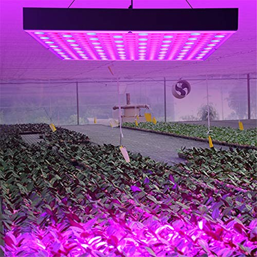 Turefans LED Grow Lampe ,LED Pflanzenlampe ,Pflanzen Licht, LED Garten Licht Wachsen, 45W, Blau und Rot Licht für Indoor/Gewächshaus / Wasser Kultur/Anbau Box Anbau [Energieeinsparung Klasse A +] (Licht Gewächshaus)