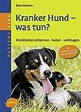 Kranker Hund - was tun?: Krankheiten erkennen, heilen, vorbeugen