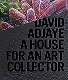 David Adjaye: A House for an Art Collector