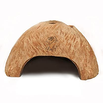 SunGrow Coco Shrimp Cave, 5x3 Inches, Coco Hut, Comfortable Hideout for Crustaceans, Perfect Breeding Area, Promotes… 2